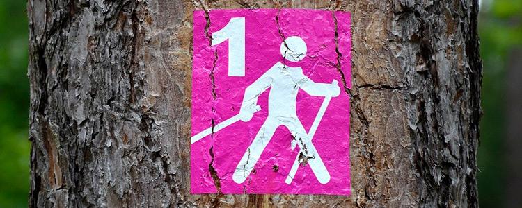 """Stowarzyszenie Lokalna Grupa Działania  """"Doliną Wieprza i Leśnym Szlakiem"""" oraz  Klub Aktywnych ART – FIT  zapraszają na rekreacyjne marsze nordic walking po trasach LGD."""
