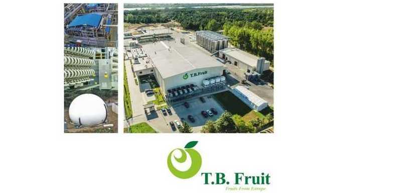 Zakład Przetwórstwa Owoców w Annopolu