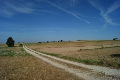 Czerniejowski Obszar Chronionego Krajobrazu