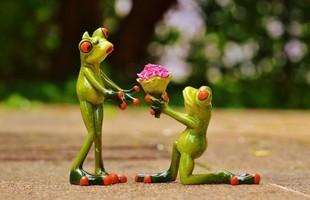 Kto pierwszy wyznaje miłość?