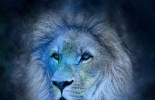 Znaki Zodiaku - czas Lwa