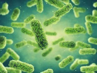 Śmiertelnie groźne bakterie oporne na antybiotyki. Czego należy się obawiać?