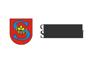 Gmina Spiczyn
