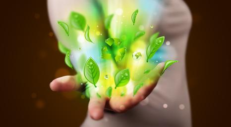 Energia przyjazna naturze