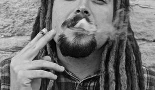 Marihuana, czyli po co świni siodło?