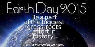 Posadzimy miliard drzew!