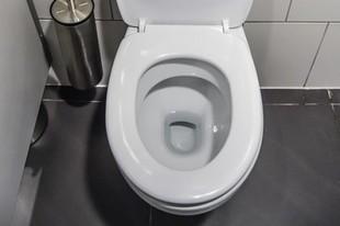 Kamień w toalecie? Są na to sposoby!