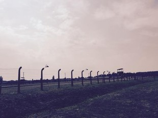 Imigranci, obozy koncentracyjne i tolerancja