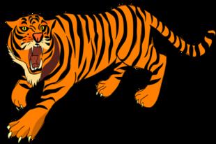 Chiński Horoskop 2016 - Tygrys