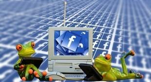 Lubisz publikować na Facebooku cytaty? Mamy złe wieści...