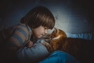 Jak koty troszczą się o dzieci?