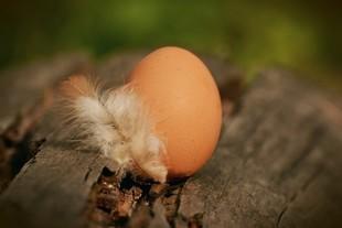 Biała magia - zdejmowanie chorób jajkiem