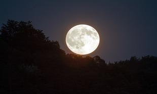 Dziś na niebie największy od lat Księżyc!