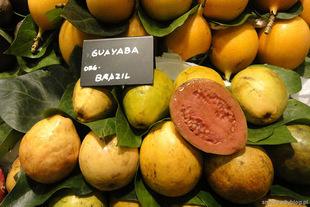 Gujawa - mało znany, zdrowy owoc