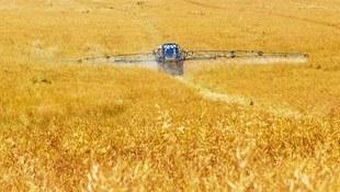 Fakty i mity o środkach ochrony roślin