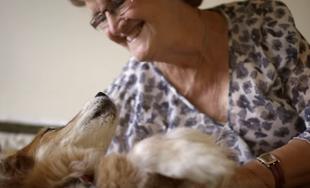 Max - pies, który rozpoznał u swojej właścicielki raka