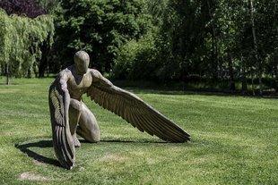 Sprawdź, czy masz kontakt ze swoim aniołem...