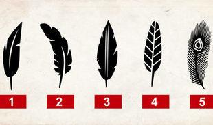 Wybierz pióro, które najbardziej ci się podoba i poznaj swój profil osobowości
