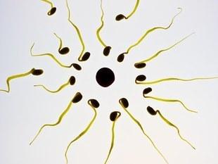 6 zaskakujących dobrodziejstw płynących ze spermy