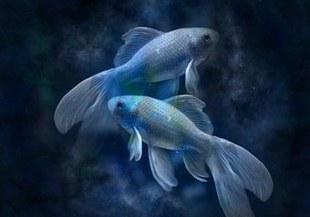 Ryby - najbardziej zagadkowy znak Zodiaku