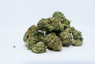 Marihuana na receptę
