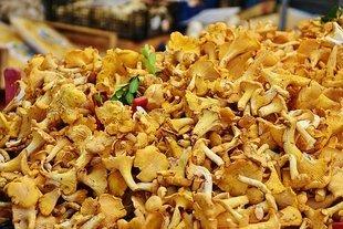 Ziemniaczany krem z kurek z kurkumą