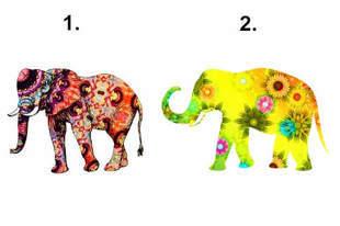 Wybierz słonia, który ci się podoba i sprawdź, czego się najbardziej boisz!