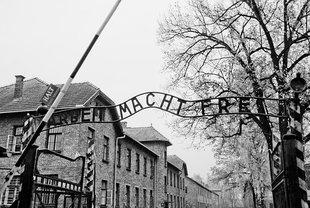 Młodzi Niemcy a Holokaust