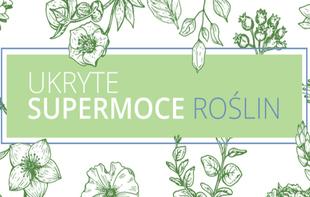 Ukryte supermoce roślin - najlepsze rośliny domowe dla Twojego ciała i umysłu