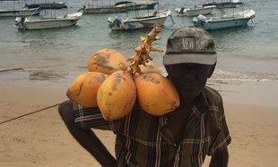 Sri Lanka - kraj pachnący cynamonem - Hikkaduwa
