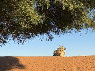 Czy warto zimą jechać do Maroka?