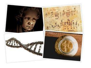 Muzyka w DNA. Beethoven zakodowany w genomie drożdży