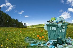 """Zero waste – nowa filozofia życia i znane """"sztuczki"""" naszych babć"""