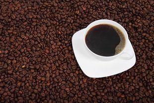 Miłość do kawy zapisana w genach