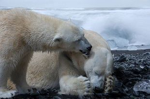 Ocieplenie z ostatnich dekad jest bezprecedensowe w skali 2 tysięcy lat