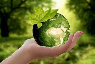 Zacznij być eko!