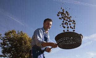 Kasztany – jesienne przysmaki w gospodarstwach Roter Hahn