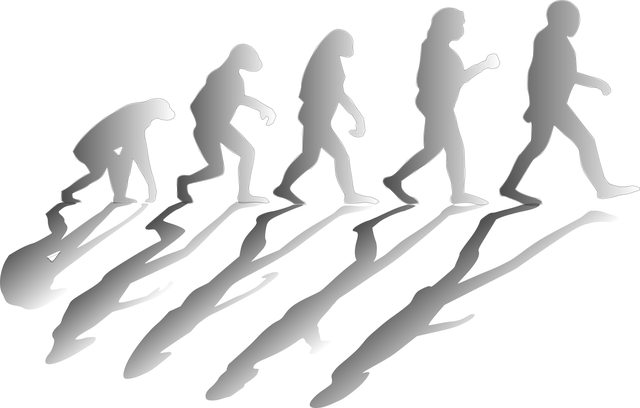 Obraz  OpenClipart-Vectors z  Pixabay