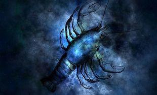 Horoskop na 2020 rok - Rak