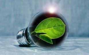 Jak skutecznie oszczędzać energię?