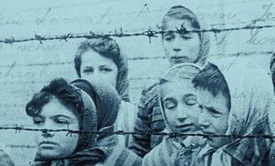 """""""Dziewczęta z Auschwitz"""" to głos dwunastu kobiet, które przetrwały w fabryce śmierci"""