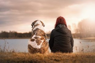 Jaka jest najlepsza rasa psa dla twojego znaku Zodiaku?