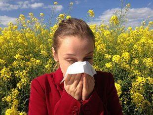10 przykazań alergika