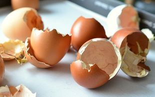 Zrób domowy suplement diety ze skorupek od jajek!