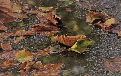 Jak zwalczyć jesienną melancholię?