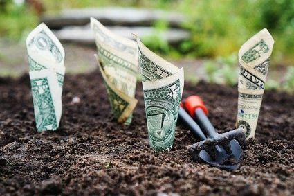 Stale jesteś pod kreską? Sprawdź, dlaczego według fen shui, ciągle uciekają ci pieniądze!i