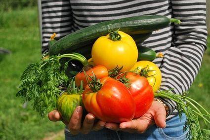Mężczyźni wegetarianie pachną ładniej - oceniły kobiety