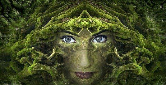 Obraz  Stefan Keller z  Pixabay