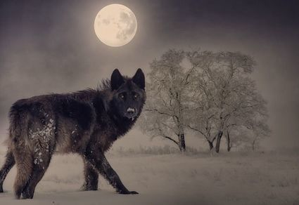 Horoskop na pełnię Wilczego Księżyca