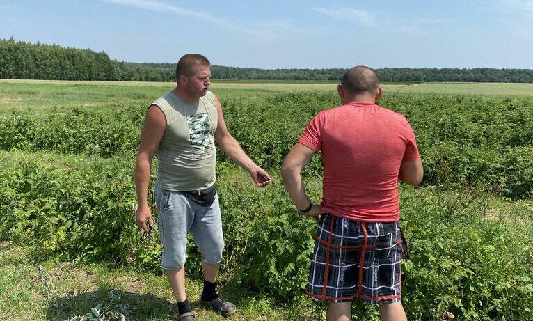 Łukasz Pietroń i Paweł Rogowski na zniszczonych plantacjach.